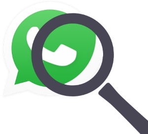 whatsapp questions for experts