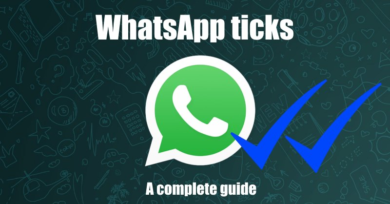 What are the ticks on WhatsApp