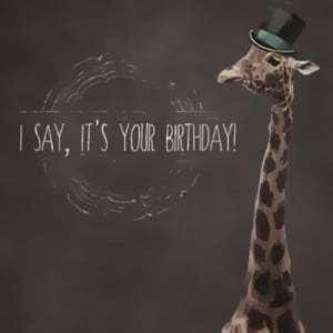 I say, It's your birthday!