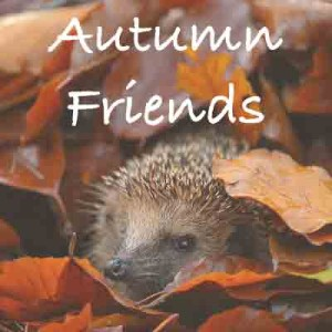 Autumn-Friends