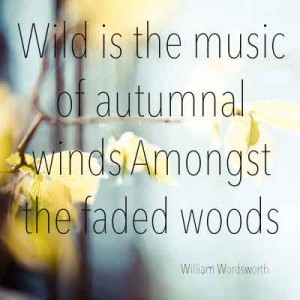 Wild is the music of autumnal winds Amongst the faded woods