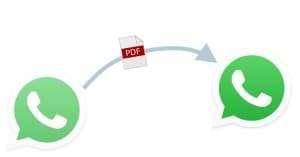 send files via WhatsApp pdf word excel