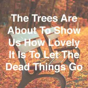 The-Trees-Are-About-To-Show-Us-How-Lovely-It-Is-To-Let-The-Dead-Things-Go