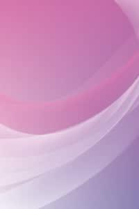 wallpaper whatsapp violet