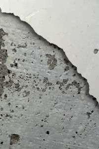 wallpaper whatsapp wall
