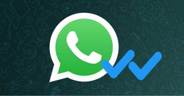 who has read message in WhatsApp group