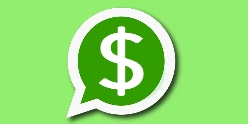 how whatsapp makes money