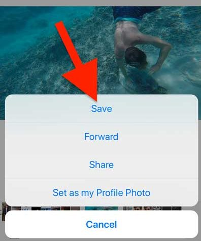 saving images and videos from WhatsApp to your iPhone